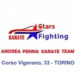 Stars Fighting Karate