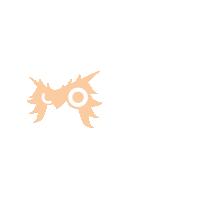 shaggy owl credits